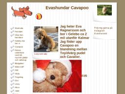 evashundar.dinstudio.se