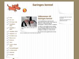 saringes.dinstudio.se