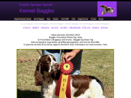 www.baggbo.se