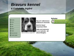www.bravurs.se
