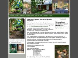 www.fagelsang.se
