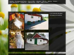 www.kattpensionattassen.se