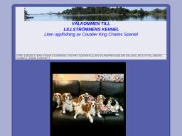 www.lillstrommens.se