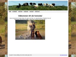 www.lilltuna.se
