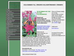 www.ornsrokoloniforening.se
