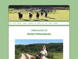 www.pettersbacka.se