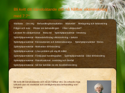 www.sjusju.se