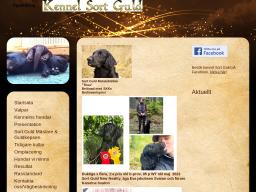 www.sortguld.se