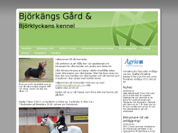 www.stallbjorkang.se