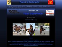 www.teamsoderholm.se